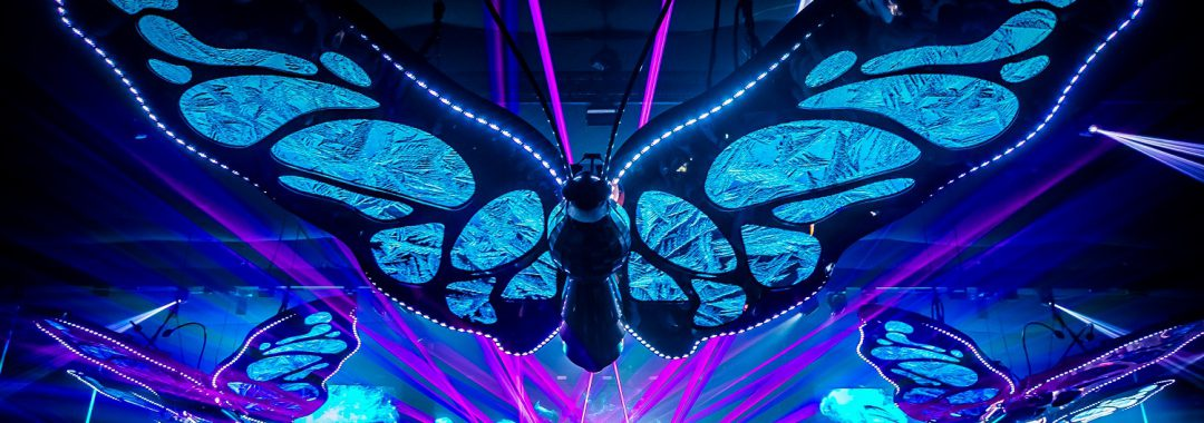 SAUSALITOS: exklusiver Partner Tomorrowland-Festival