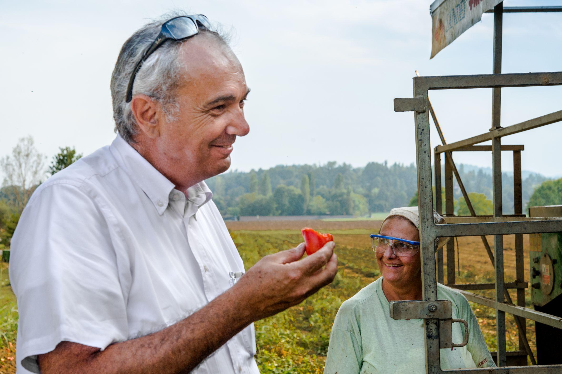 Tomatensaison 2020 von Mutti