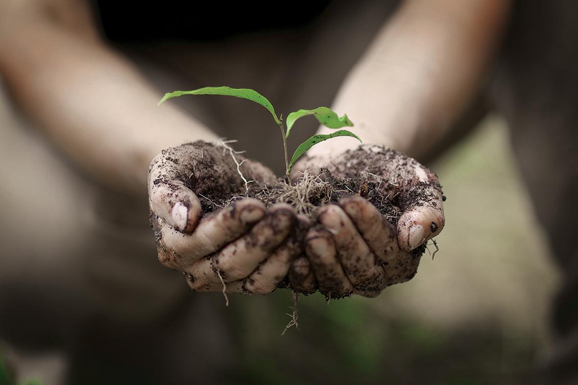 TeeGschwendner Nachhaltigkeitskampagne Think Global - Act Local