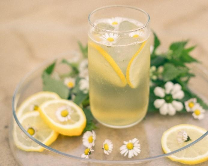 """Ein neues Erblühen des Sour Daisy mit dem """"Lagerkorn Daisy"""" der Feinbrennerei Sasse"""
